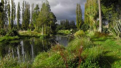 Pohangina Wetlands - VueScan Review