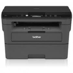 Brother DCP-L2537DW